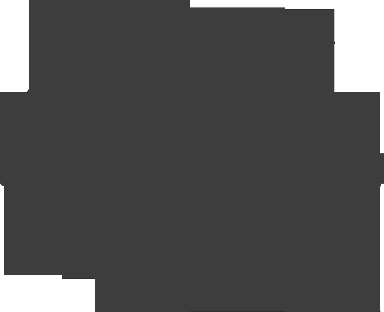 tallerdecatanegro